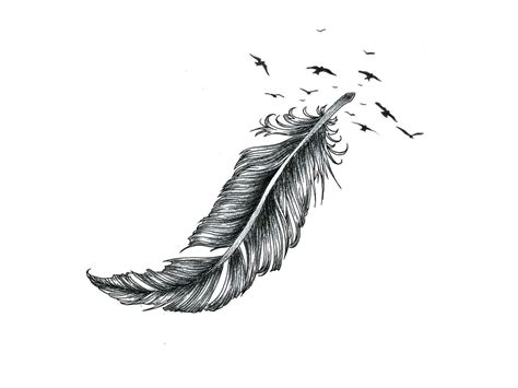 33+ Awesome Pigeon Feather Tattoos