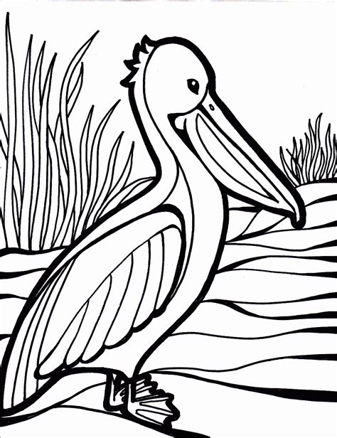 Bird Coloring Pages | Coloring Pages To Print