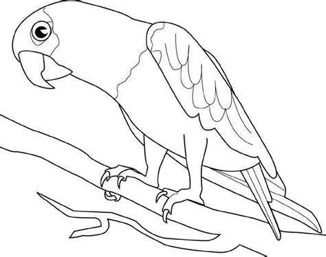 Cute Bird Coloring Pages - Free Printable Pictures ...