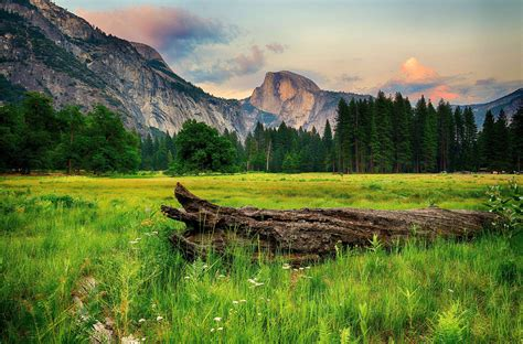 Mountains trees landscape wallpaper | 7362x4858 | 441332 ...